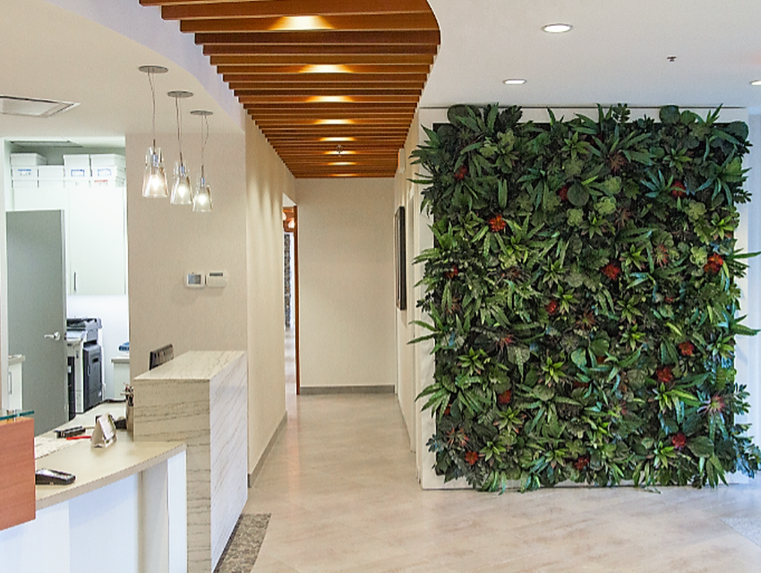 Atomic Electrical Solutions - Vernier Dental Office Entry